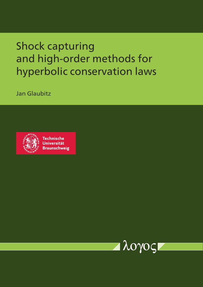 Jan Glaubitz: Shock capturing and high-order methods for hyperbolic conservation laws